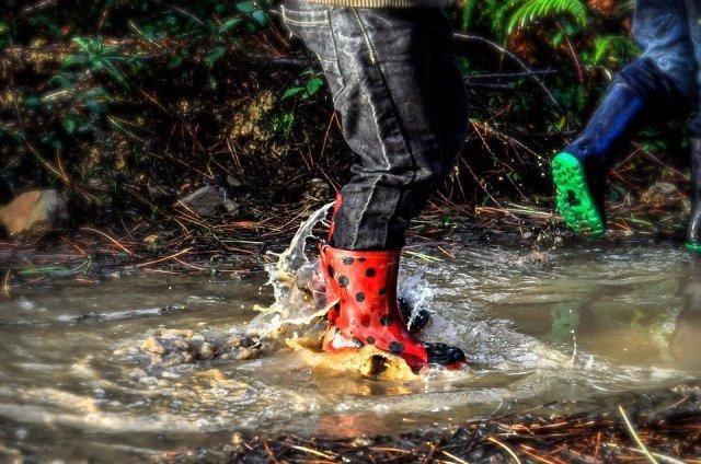 boots-4483438_960_720.jpg